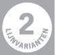 Svedex deur met 2 lijnvarianten